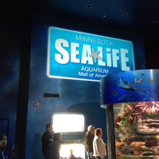 2/18/2012에 Josh O.님이 SEA LIFE Minnesota Aquarium에서 찍은 사진