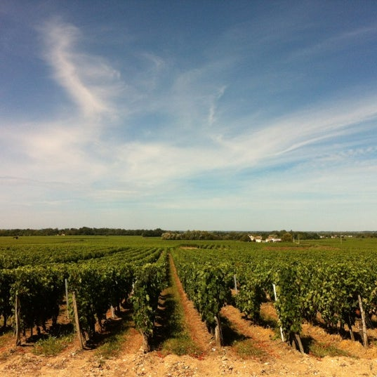 Das Foto wurde bei Château Roc de Calon von Thomas L. am 8/27/2012 aufgenommen