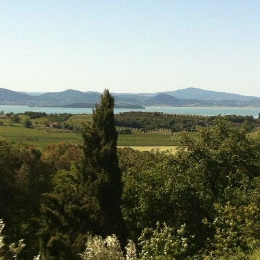 5/17/2012 tarihinde Rosa C.ziyaretçi tarafından Passignano sul Trasimeno'de çekilen fotoğraf