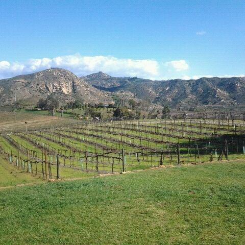 รูปภาพถ่ายที่ Orfila Vineyards and Winery โดย Jack P. เมื่อ 2/16/2012