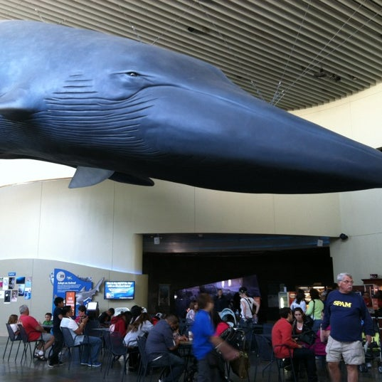 Das Foto wurde bei Aquarium of the Pacific von Ruthie T. am 3/21/2012 aufgenommen