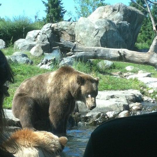 7/29/2012 tarihinde Melanieziyaretçi tarafından Minnesota Zoo'de çekilen fotoğraf