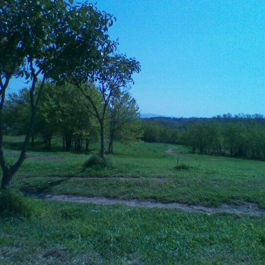 3/30/2012に-alice- K.がParco Regionale dell'Appia Anticaで撮った写真