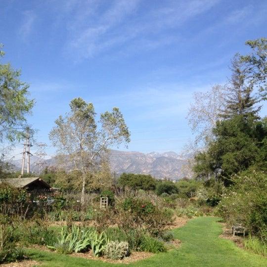 4/8/2012 tarihinde David M.ziyaretçi tarafından Descanso Gardens'de çekilen fotoğraf