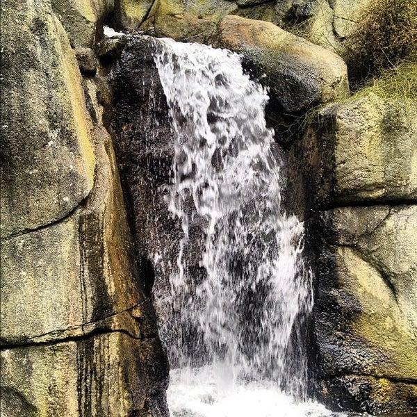 4/7/2012 tarihinde Yaman K.ziyaretçi tarafından Auckland Zoo'de çekilen fotoğraf
