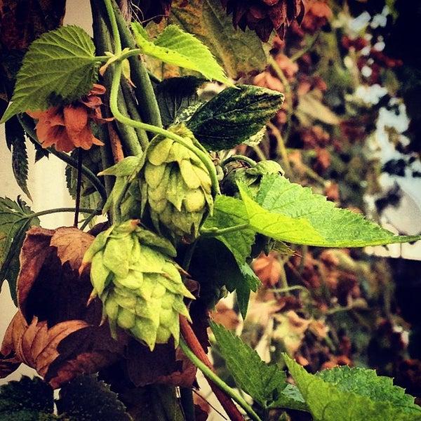 Foto scattata a Terrapin Beer Co. da Heather S. il 8/4/2012
