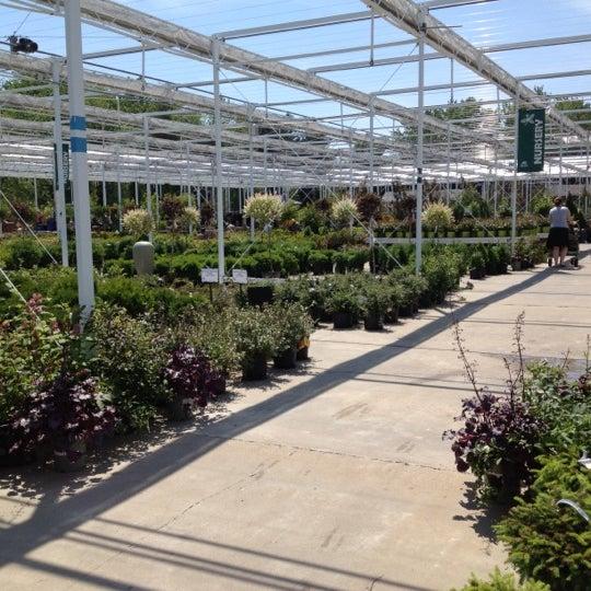 Photos at petitti garden center garden center - Petitti garden center strongsville ...