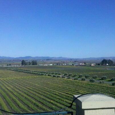 Das Foto wurde bei Gloria Ferrer Caves & Vineyards von Michael A. am 2/19/2012 aufgenommen
