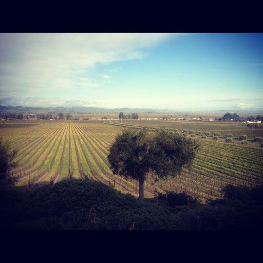 Das Foto wurde bei Gloria Ferrer Caves & Vineyards von Morgan G. am 2/18/2012 aufgenommen