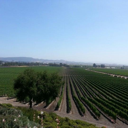 Das Foto wurde bei Gloria Ferrer Caves & Vineyards von Sarah am 7/23/2012 aufgenommen