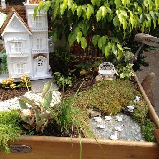 Mcdonald Garden Center Wythe 1 Tip
