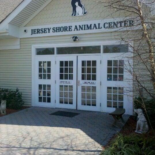 Photos at Jersey Shore Animal Shelter - Brick Township, NJ