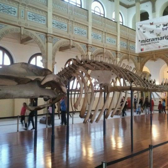 7/20/2012にSandthomas L.がMuseo Nacional de Historia Naturalで撮った写真