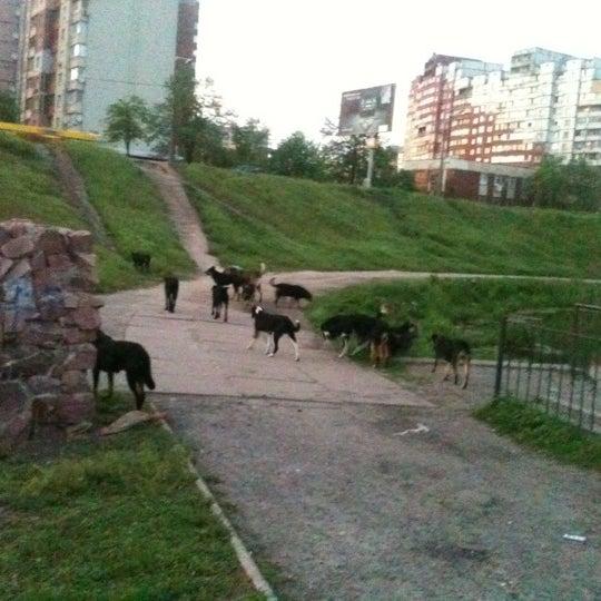 รูปภาพถ่ายที่ Троєщинський канал โดย Olena V. เมื่อ 5/1/2012