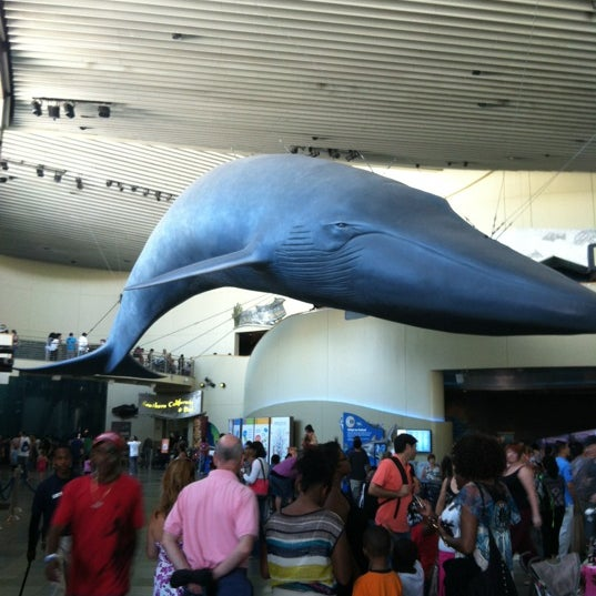 7/29/2012에 Rasheeda W.님이 Aquarium of the Pacific에서 찍은 사진