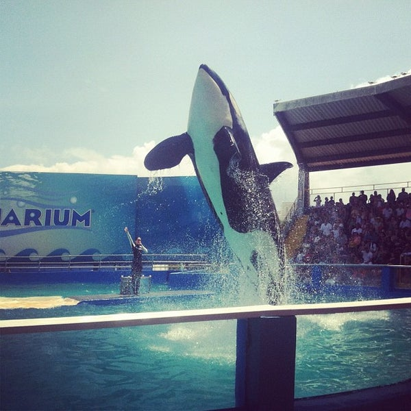 Photo prise au Miami Seaquarium par Hansel L. le9/2/2012