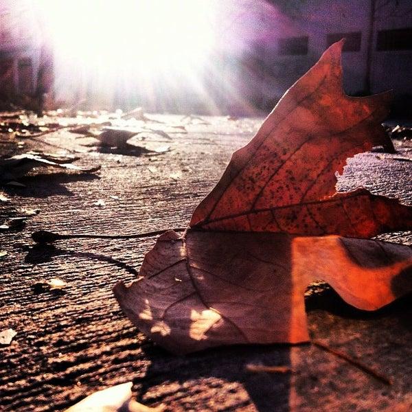 Photo prise au Barrio Italia par Gonzalo D. le9/2/2012