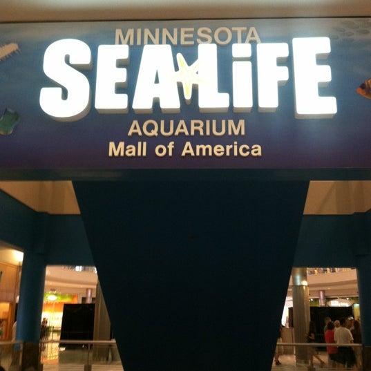 7/18/2012에 Kyndra S.님이 SEA LIFE Minnesota Aquarium에서 찍은 사진