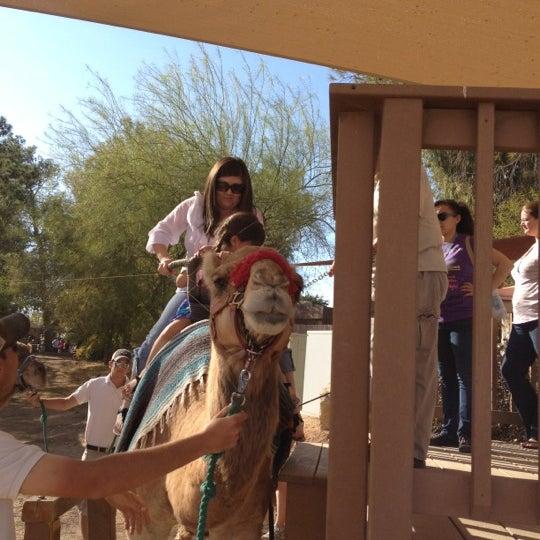 Foto tomada en Phoenix Zoo por Miss L. el 3/11/2012