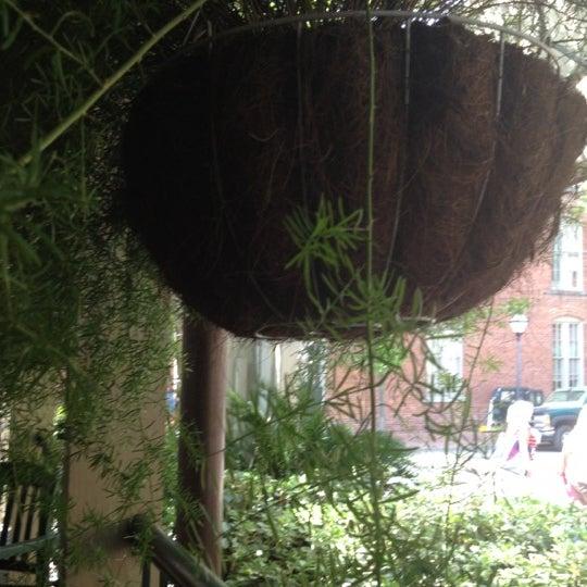 4/1/2012에 Linda C.님이 Tommy Condon's에서 찍은 사진