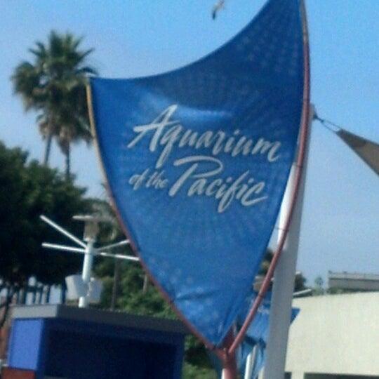 Das Foto wurde bei Aquarium of the Pacific von Kristin M. am 6/23/2012 aufgenommen
