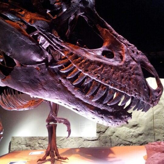 Foto scattata a Houston Museum of Natural Science da Jimmy D. il 7/23/2012