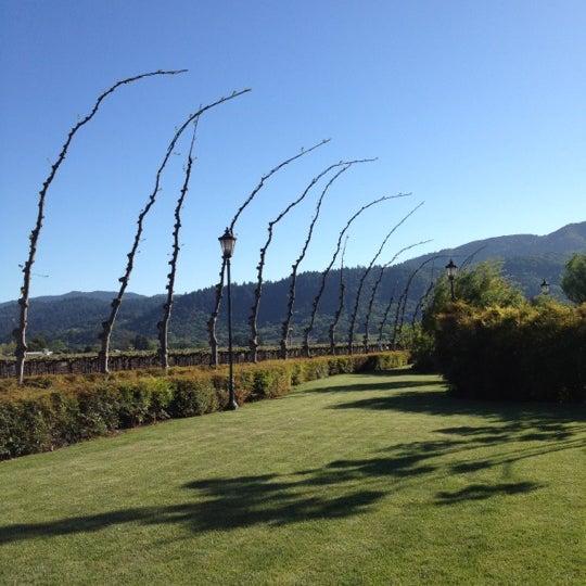 Photo prise au Peju Province Winery par Patricia Y. le4/23/2012