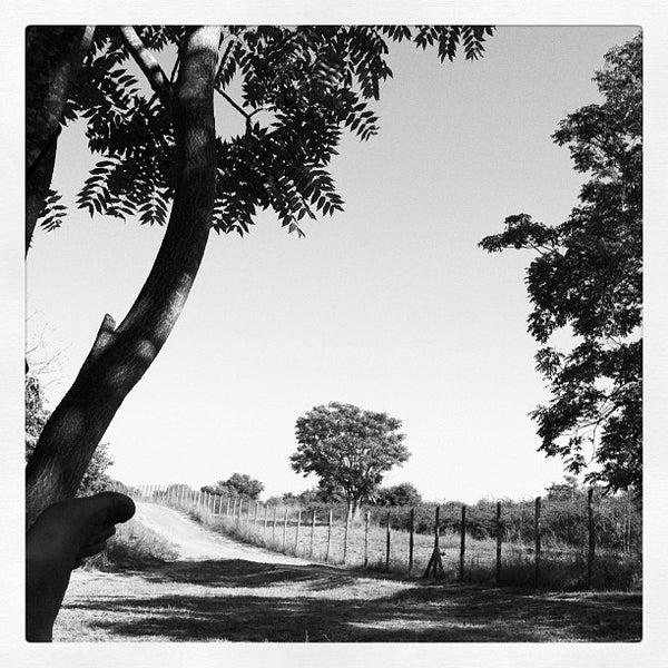 8/18/2012にMassimo C.がParco Regionale dell'Appia Anticaで撮った写真