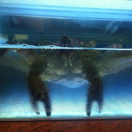 3/29/2012에 blair님이 Oriental Garden 福臨門海鮮酒家에서 찍은 사진