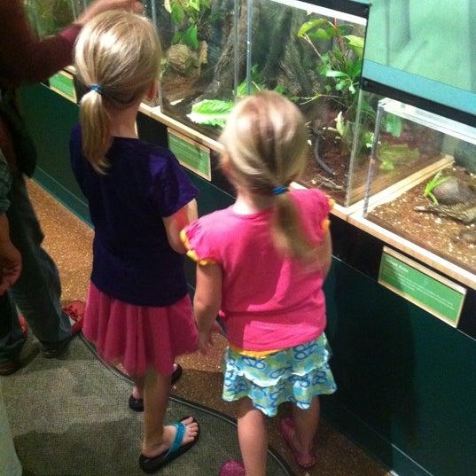 Foto scattata a Houston Museum of Natural Science da Andrew R. il 6/2/2012