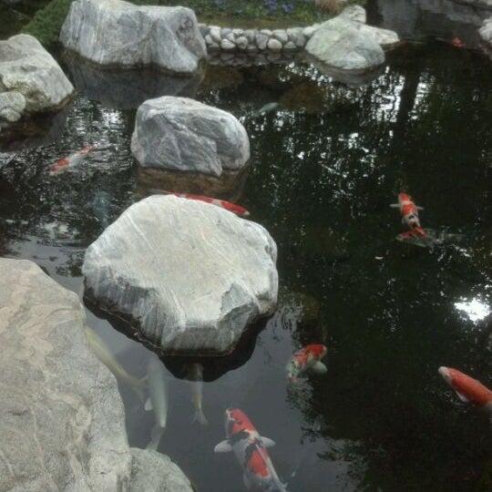 3/6/2012にCarrie B.がJapanese Friendship Gardenで撮った写真