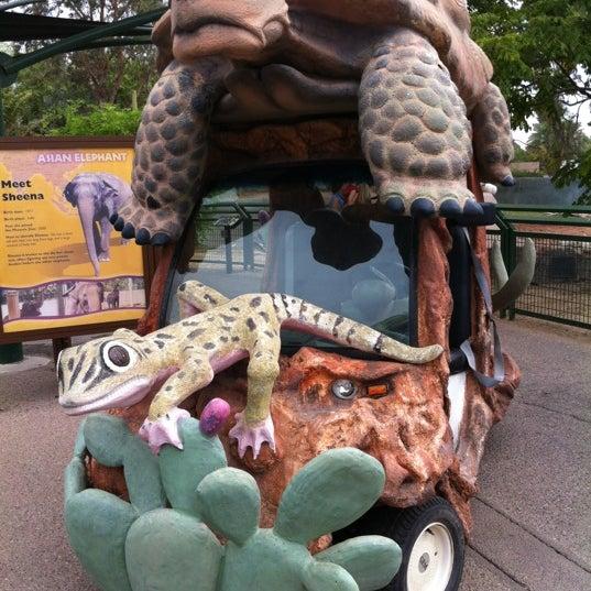Снимок сделан в Phoenix Zoo пользователем Jonathan M. 7/4/2012