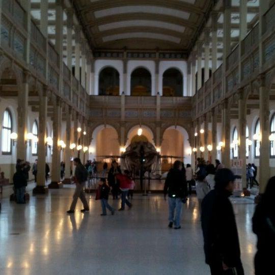 5/27/2012にMarcos B.がMuseo Nacional de Historia Naturalで撮った写真