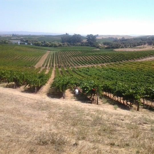 Das Foto wurde bei Artesa Vineyards & Winery von David Anthony Temple (. am 8/20/2012 aufgenommen