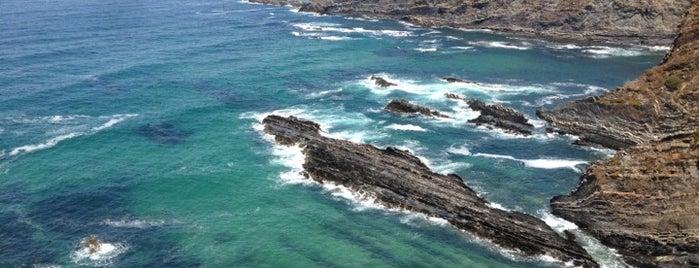 Farol do Cabo Sardão is one of Locais curtidos por Tim.