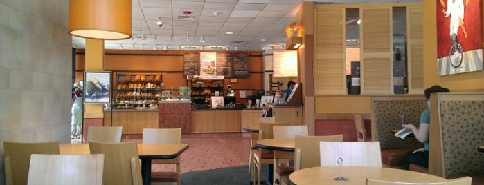 Panera Bread is one of Best places to go in Houston.