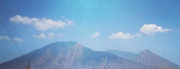 Taman Nasional Baluran (Baluran National Park) is one of Parker.