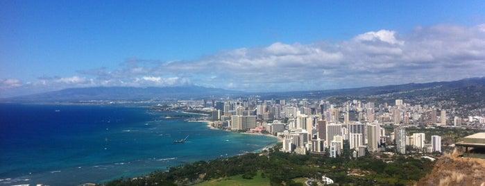 Honolulu: The Big Pineapple #4sqCities