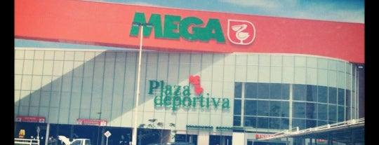 Mega Comercial Mexicana is one of Lugares favoritos de Elva.