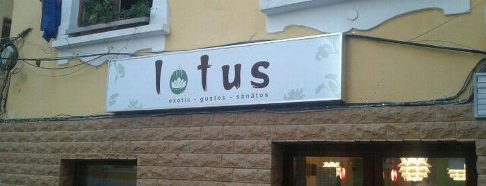 Lotus is one of Great restaurants & cafes in Cluj.