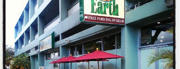 Down to Earth Organic & Natural is one of Ohau Groceries.