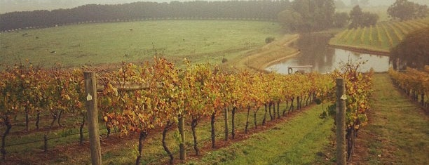 Coldstream Hills Winery is one of Melbourne.