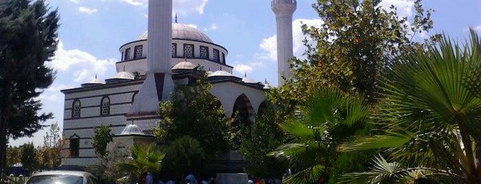 Pendik Sahil Camii is one of Pendik.