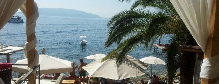 La Capitale is one of montenegro.