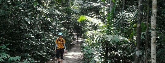 Terentang Trail is one of Trek Across Singapore.