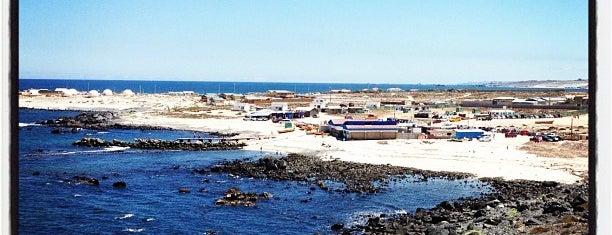 Punta de Choros is one of Lieux qui ont plu à Andres.