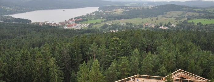 Stezka korunami stromů is one of Kids.