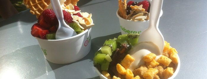 Pinkberry is one of Foodz.