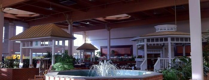 Sheraton Burlington Hotel is one of Posti che sono piaciuti a Raven.