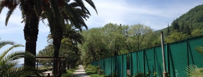 Парк Принца Ольденбургского is one of Lugares guardados de Kate.